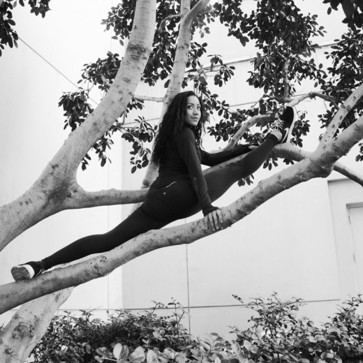 tree splits